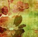 art vintage floral art