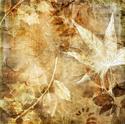 Floral Art Sepia Leaf