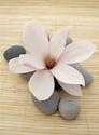 Floral Flower Stones