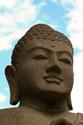 inspire brn buddha