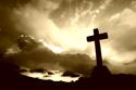 Inspire Brn Cross