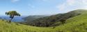 landscape green landscape