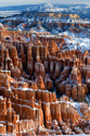 landscape snow canyon