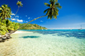 landscape tropical beach