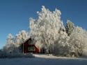 Serene Landscapes Barn