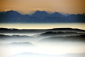 Serene Landscapes Fog