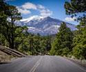 Serene Landscapes Road