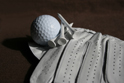 Sports Golf Glove