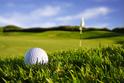Sports Golf Grass
