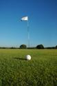 Sports Golf Green