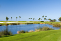 Sports Golf Lake