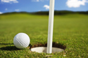 Sports Golf Pin