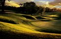 Sports Golf Sun
