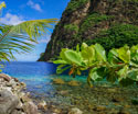 Tropical Landscapes Waterside