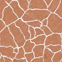 White Veins Orange Marble