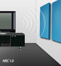 NRC 1