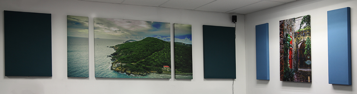 Custom Image Wall Acoustic Treatment
