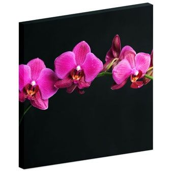 Floral Acoustic Image Panels Small Image