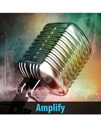 Amplify Gallery Acoustic Panels
