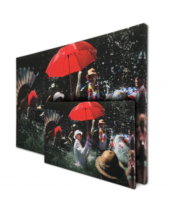 Panoramic Custom Size Image Acoustic Panels