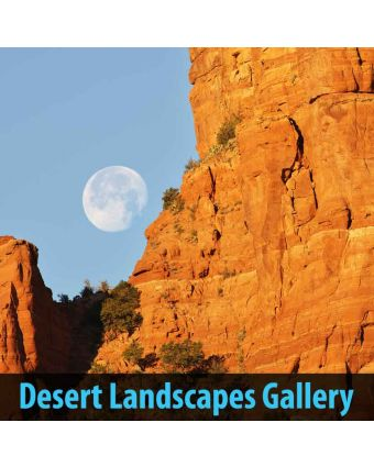 Desert Landscapes of Decorative Sound Absorbing Panels
