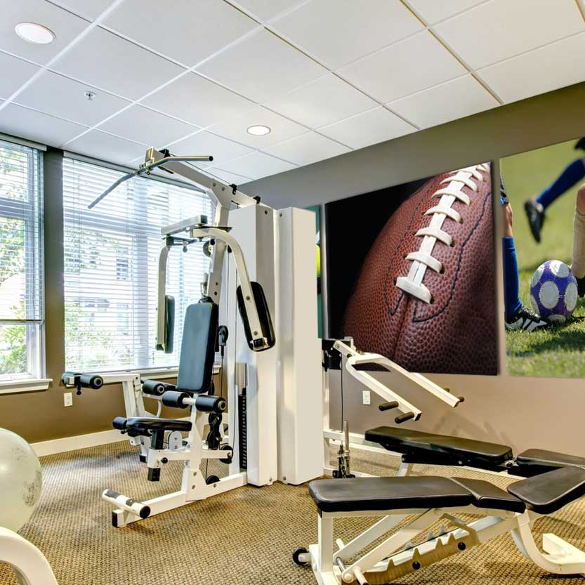 Art Acoustic Panels for Home Gym