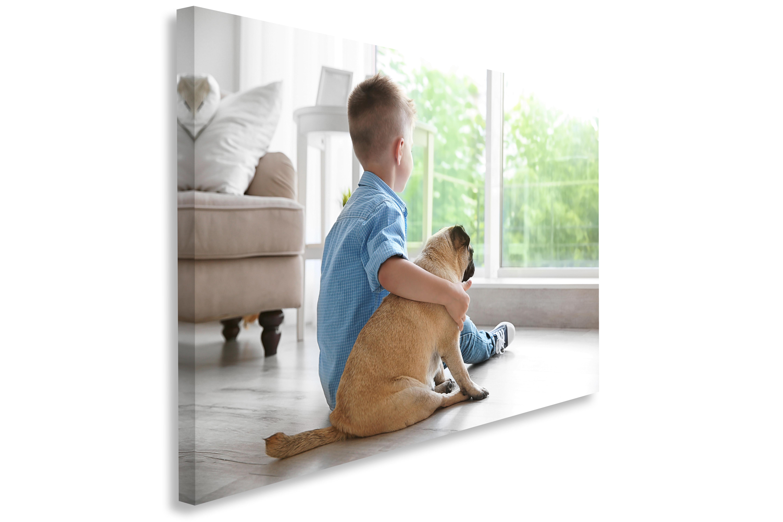 Boy and Dog Acoustic Image Panel