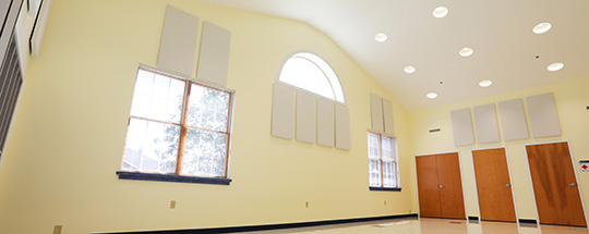 Acoustic panels for school