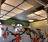 Acoustic Products for Ceilings